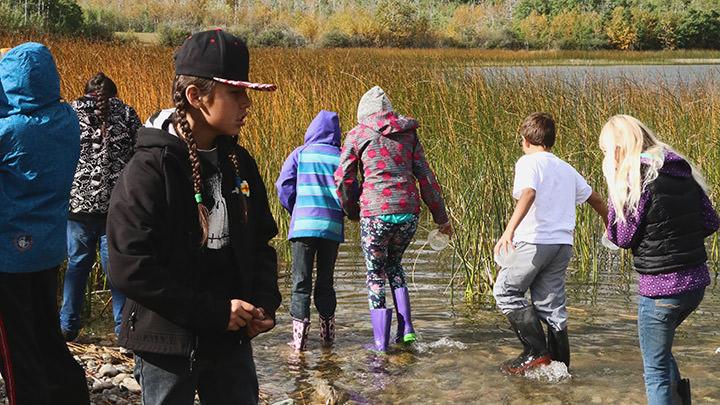 Lors d'une sortie en plein air à la Réserve de biosphère de Waterton, en Alberta, des élèves explorent les invertébrés aquatiques et découvrent la gestion des zones humides.